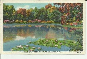 Scenes From Spring Glen, New York