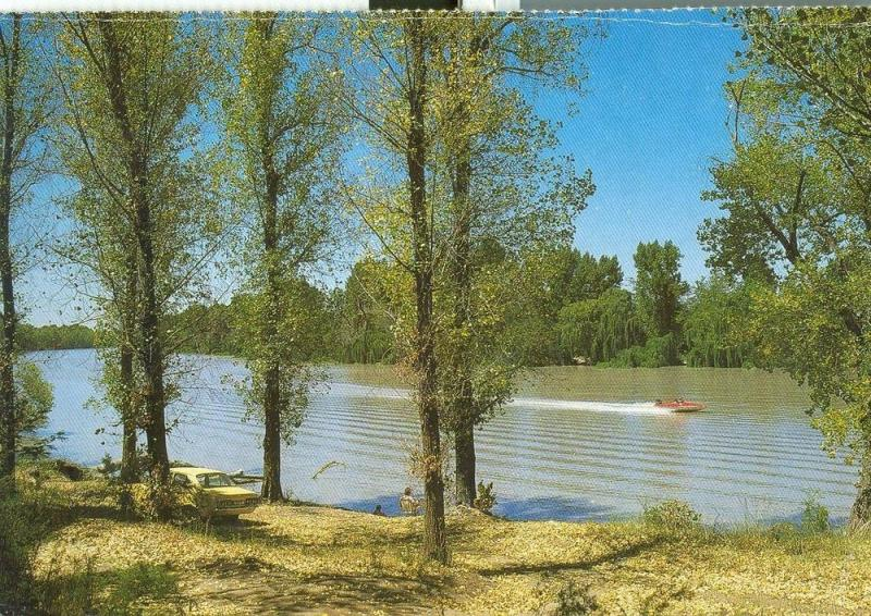 South Africa, Vaal River, Willow Trees, unused Postcard