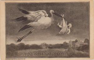 Stork With Baby In Blanket A New Tenor Is Coming 1911