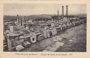 Algeria Timgad pres de Batna Temple du Genie de la Colonie