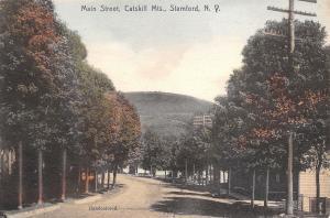 Stamford New York~Main Street Shade Trees~Business~Catskill Mts~Handcolored 1907