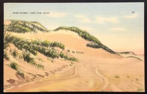 Linen Postcard Unused Sand Dune Cape Cod MA LB