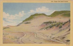 Massachusetts Cape Cod Sand Dunes 1952 Curteich
