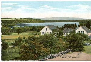 NH - Freedom, Loon Lake