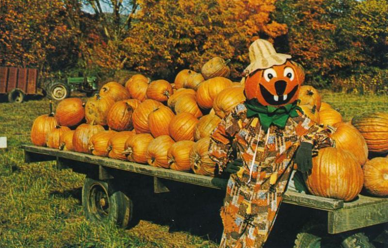 Pumpkin Man at Halloran's Pumpkinville - Great Valley NY, New York - Roadside
