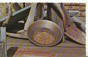 Canada Postcard - A Pan of Real Gold Nuggets - Dawson City - Yukon - Ref 17289A