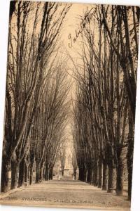 CPA AVRANCHES - Le Jardin de l'Evenche (149775)