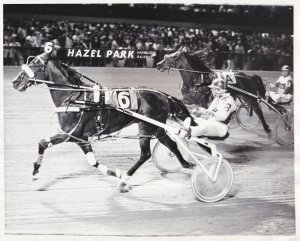 HAZEL PARK RACEWAY, Harness Horse Race, ANDY'S HIDEAWAY wins, 1980