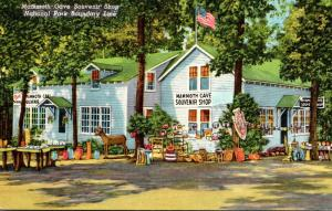 Kentucky Cave City Mammoth Cave Souvenir Shop Curteich