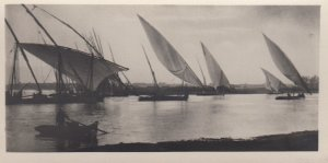 RP: EGYPT , 00-10s ; Cairo , Boats on the Nile