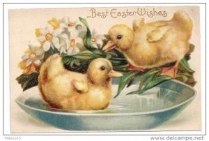 Embossed Easter Postcard Ducklings in Bowl of Water Narcissus c 1910 IAP Germamy
