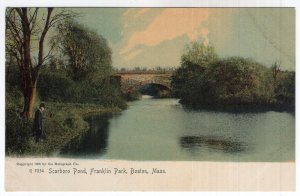 Boston, Mass, Scarboro Pond, Franklin Park, Rotograph