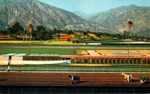 California Santa Anita Horse Racing