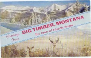 Greetings from Big Timber Montana MT
