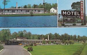 3-Views, Mosley's Shady Lake Motel, ROCKY MOUNT, North Carolina, 1940-1960s