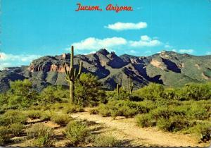 Arizona Tucson Santa Catalina Mountains