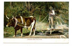 Southern Mountain Ox & Sled & Farmer