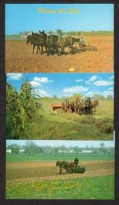 Lot 3 Amish Country Farming Horses Haying Postcards