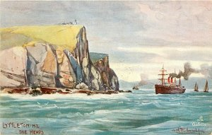 Tuck Postcard Ser. 7353; Lyttleton New Zealand, The Heads, unposted c1910