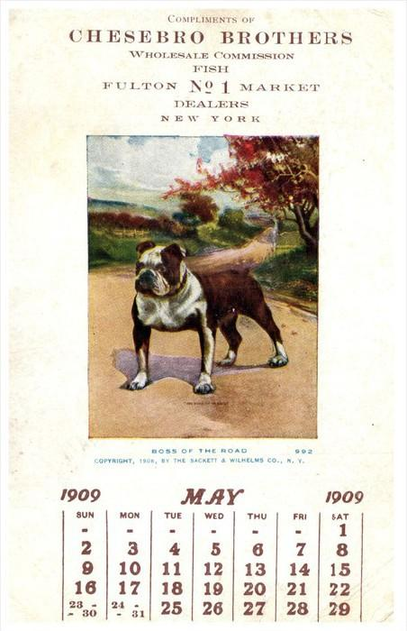 9350  NY Fulton Chesebro Bros.  Fish Brokers,  Bull Dog,  Calender May 1909