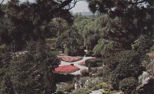 The Rock Garden, Hamilton, Ontario, Canada, 50-60s
