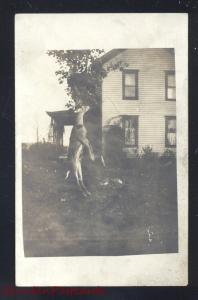 RPPC RIPLEY NEW YORK DEER HUNTING CATCH GAME VINTAGE REAL