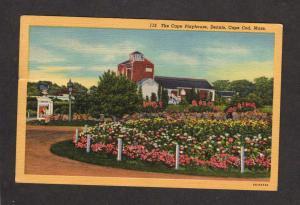 MA The Cape Playhouse Plays Dennis Cape Cod Mass Massachusetts Postcard Linen