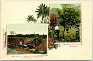 1900s PANAMA CANAL Postcard Steam Shovel Empire Cut / Cocoa Tree w/ Fruit UNUSED