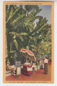 P2237 vintage postcard victory square people relaxing los angeles calif