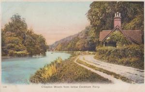 Clivedon Ferry Cookham Ferry Yorkshire Antique Postcard