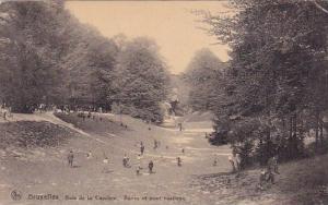 Belgium Brussells Bruxelles Bois De La Cambre Ravin Et Pont Rustique