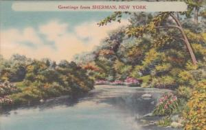 New York Greetings From Sherman
