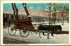 Santa Fe, New Mexico Postcard WOOD HAULERS Burro Cart Snow Scene Curteich