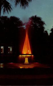 Florida Deland Holler Fountain At Night Stetson University
