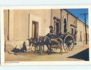 Unused Pre-1980 BURRO AND CART Nogales Mexico hn1224