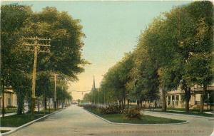 Waterloo Iowa~East Park Boulevard~Trees~Power Poles~1910 Postcard
