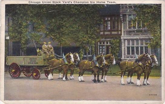 Chicago Union Stock Yard's Champion Six Horse Team Chicago Illinois