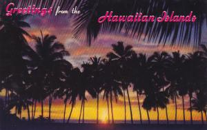 Sunset Through The Palms Greetings From The Hawaiian Islands