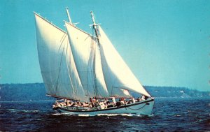 Maine Camden Windjammer Adventure Captain Jim Sharp
