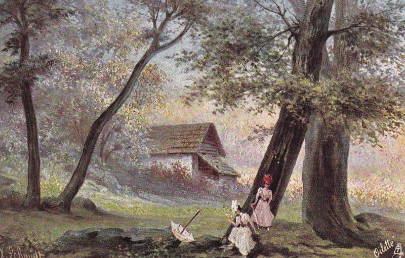 1900-1910s; Serie Ansichten Vom Schwarzwald, TUCK No. 257