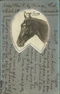 Beautiful Horse Art Deco Border O.P.F. OPF 1904-05 Used Postcard