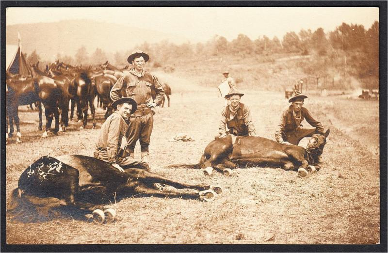 Cowboys and Horses Real Photo Postcard 1900s-1910s