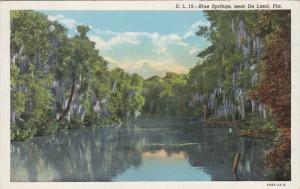 Blue Springs near De Land, Florida, PU-1943