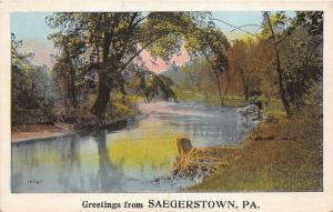 Saegerstown Pennsylvania~French Creek~Tree Overhanging Water~Stump~Rock~1920s Pc