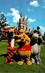 Florida Walt Disney World Winnie-the-Pooh With Tigger and Eeyore