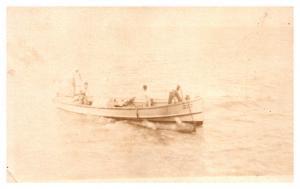 Sailors Landing Hammerhead Shark , USS McFarland , RPC