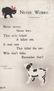 Never Worry The Dog That Killed The Cat Comic Songcard Humour Postcard