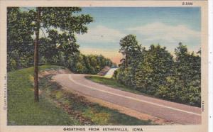 Iowa Greetings From Estherville Curteich