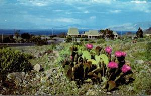 Nevada Boulder City Lake Mead National Recreation Area Visitor Center