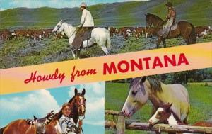 Howdy From Montana Showing Horses and Cattle